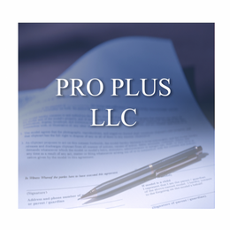 The Professional Plus LLC package is for Attorneys, CPAs, and Financial Advisors who need only the bare minimum of service and want to handle many of the details themselves and wish to retain us as Nevada Registered Agent.