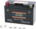 Fire Power - Battery Ct9b-4 Sealed Factory Activated - CT9B-4
