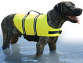 Paws Aboard - Doggy Vest, XXS, Neon Yellow, 2-6 lbs. (1100)