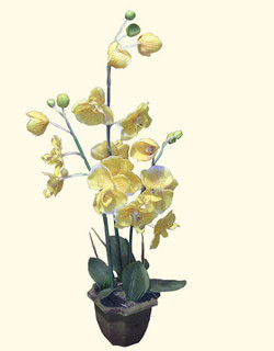 Silk Yellow orchid with pot