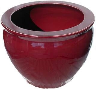 Oxblood Chinese porcelain fishbowl planter for indoor or outdoor use.