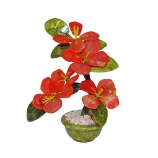 Oriental Jade Plum Blossom Tree