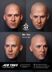 Ace Toyz ATH-004 Mr. Vin 1/6 figure head sculpt