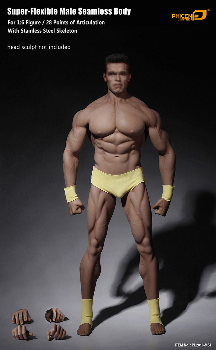 1:6 Phicen TBLeague PL2016-M33 Male Super Strong Seamless Stainless Steel Body