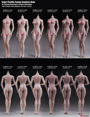 TBLEAGE (PHICEN)  Super Flexible Seamless Female 1/6 Body Series with Stainless Steel Skeleton