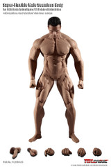 TBLeague PL2018-M35 1/6th Scale Super Flexible Male Seamless Muscular Body