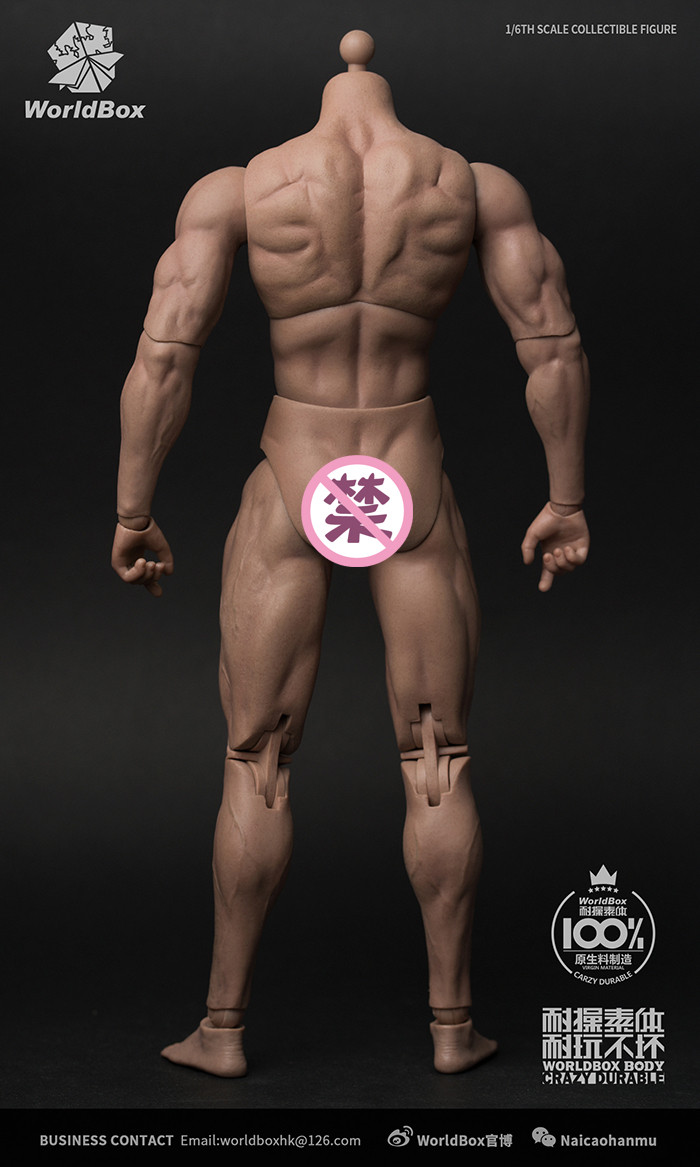 1//6 scale Worldbox AT027 Durable Body Ripped nude body