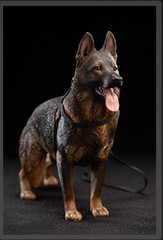 VERYCOOL VCF-2037C 1/6 German Shepherd Dog