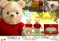 Hot Toys MMS502 Winnie the Pooh Christopher Robin Collectible Figure