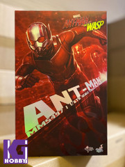 Hot Toys MMS497 Ant-Man Ant- Man and the Wasp  1/6th scale Collectible Figure