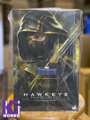 Hot Toys MMS532 Hawkeye Avengers Endgame 1/6th scale Hawkeye Collectible Figure (Deluxe Version)