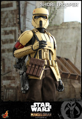 Hot Toys TMS031 Shoretrooper Star Wars: The Mandalorian  1/6th scale Collectible Figure