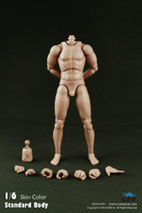 COOMODEL 1/6 Male Narrow Shoulder Nude Action Figure Body-Standard Height