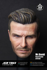 Ace Toyz ATH-002 Mr David 1/6 figure head sculpt