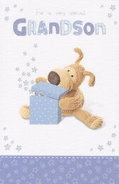 Boofle - Grandson's Birthday Card