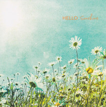 Wild Daisies Greeting Card - Camden Graphics