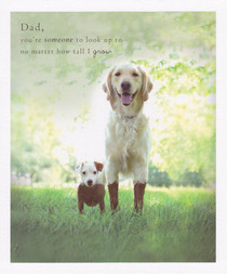 Dad Birthday Card - Funny Dogs