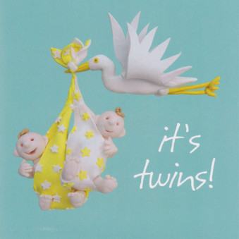 Twins New Birth Greeting Card - One Lump Or Two