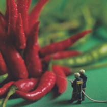 Chilli Firefighters Greeting Card