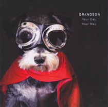 Grandson Birthday Card - Super Dog