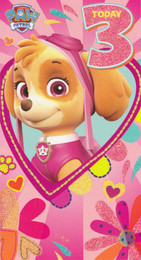 Paw Patrol - Age 3 Birthday Card - Pink