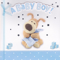 Boofle - Baby Boy's New Birth Card