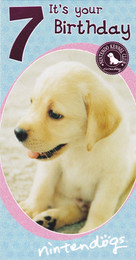 Nintendogs Age 7 Birthday Card