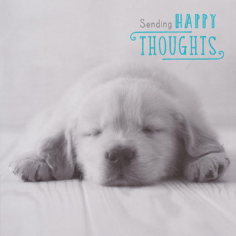 Sending Happy Thoughts Greeting Card