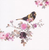 Stephanie Rose Contemporary Bird Card