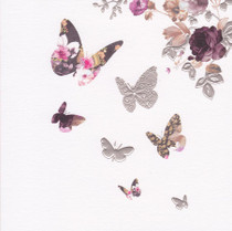 Stephanie Rose Contemporary Butterfly Card