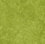 Forbo Marmoleum Decibel 324735 green