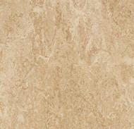 Forbo Marmoleum Modular t2707 barley 50cm x 50cm