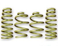 ARK Performance GT-S Lowering Springs - Infiniti G37 Coupe  08-13