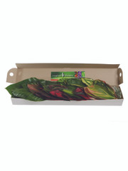 Mixed Box of Tropical Leaves