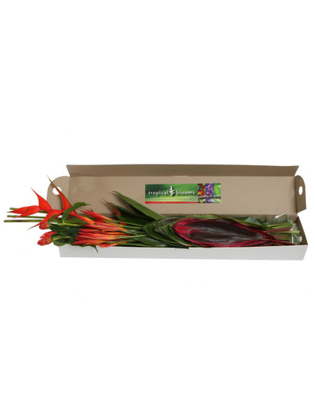 Example gift box