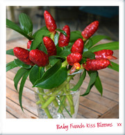 Baby French Kiss Posy