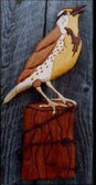MEADOW LARK INTARSIA PATTERN