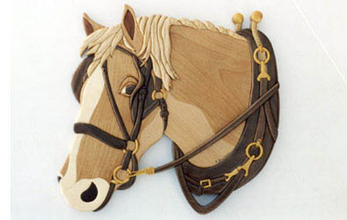 basic equipment horse