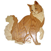 SITTING LONG HAIR CAT Intarsia Pattern