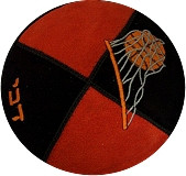 Basketball Two-Tone Suede Panel