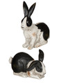 Black and White distressed Bunnies  Set/2