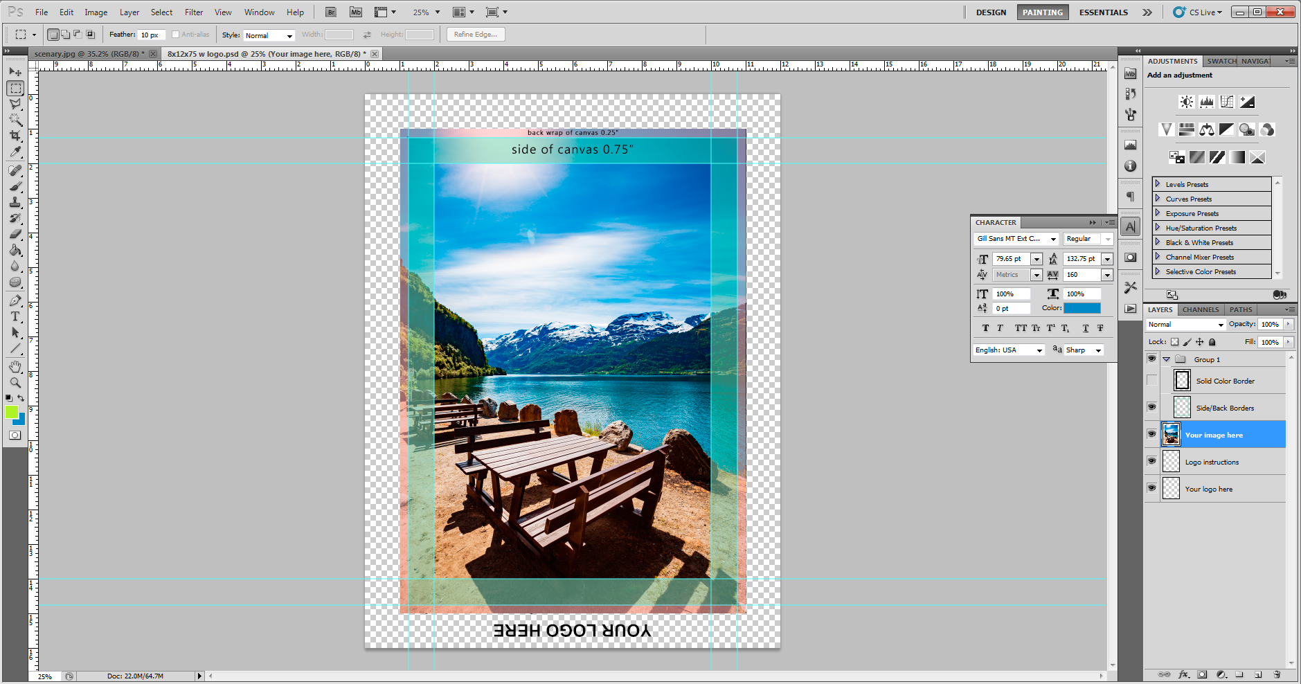 Canvas Image Setup 7