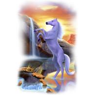 Rearing Desert Horse T-shirt