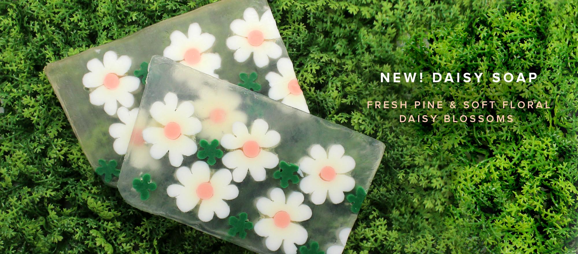 NEW! Daisy Soap
