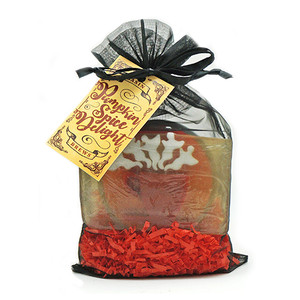 Pumpkin Spice Delight Brew Bag