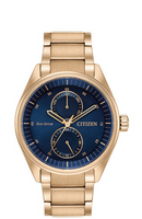 Citizen Eco-Drive Paradex BU3013-53L
