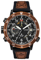 Citizen Eco-Drive BN5055-05E ALTICHRON