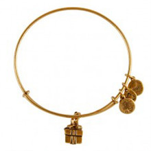 Alex and Ani Gift Box Bangle Russian Gold