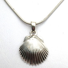 Sterling Silver Scallop Shell Necklace 1
