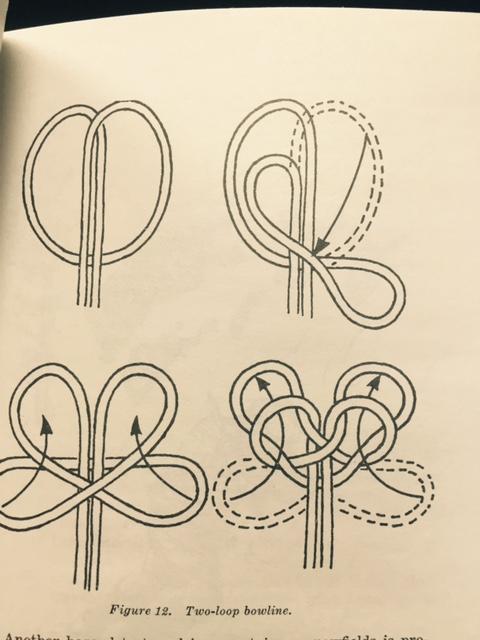 illustration-2-.jpg
